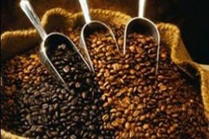 Kahve Çekirdekleri ve Tanımları Nelerdir?